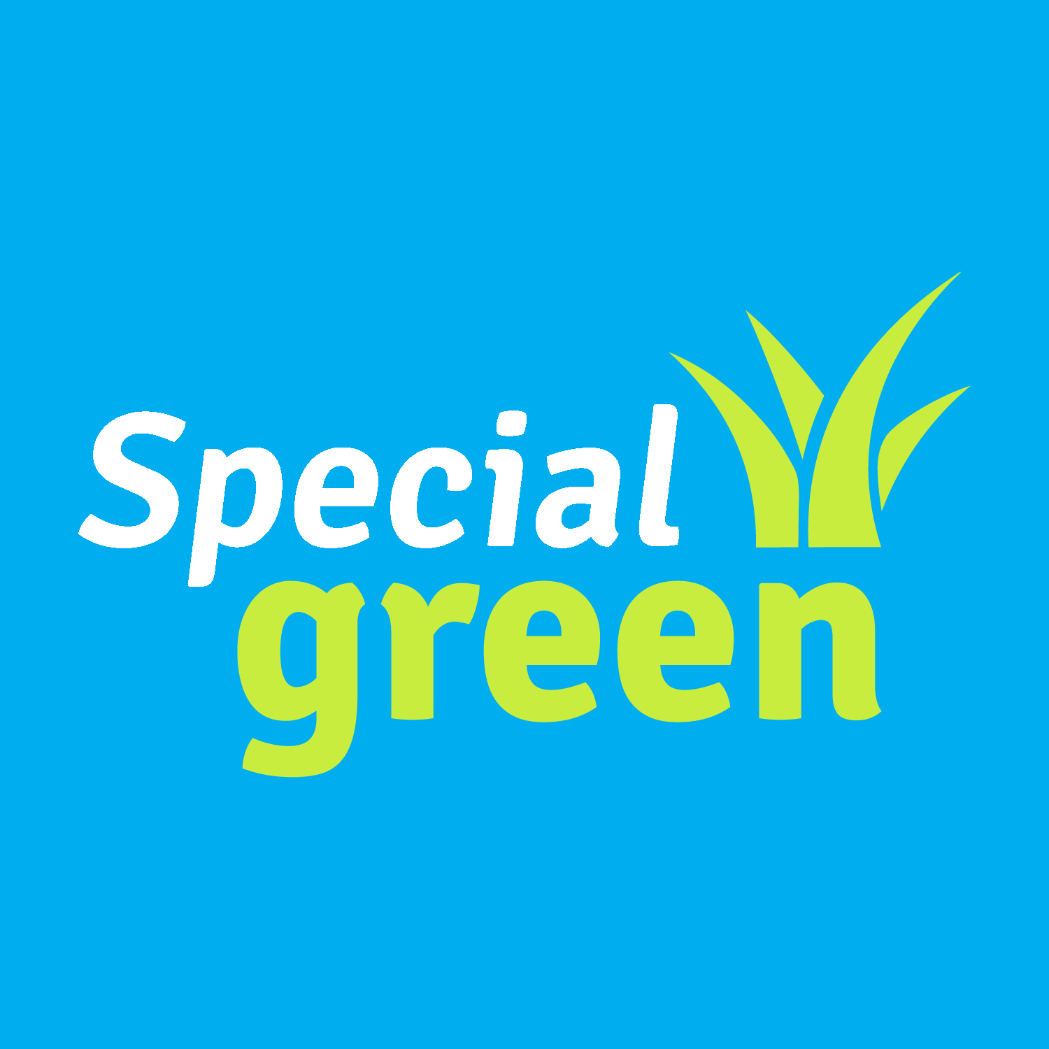 Special Green
